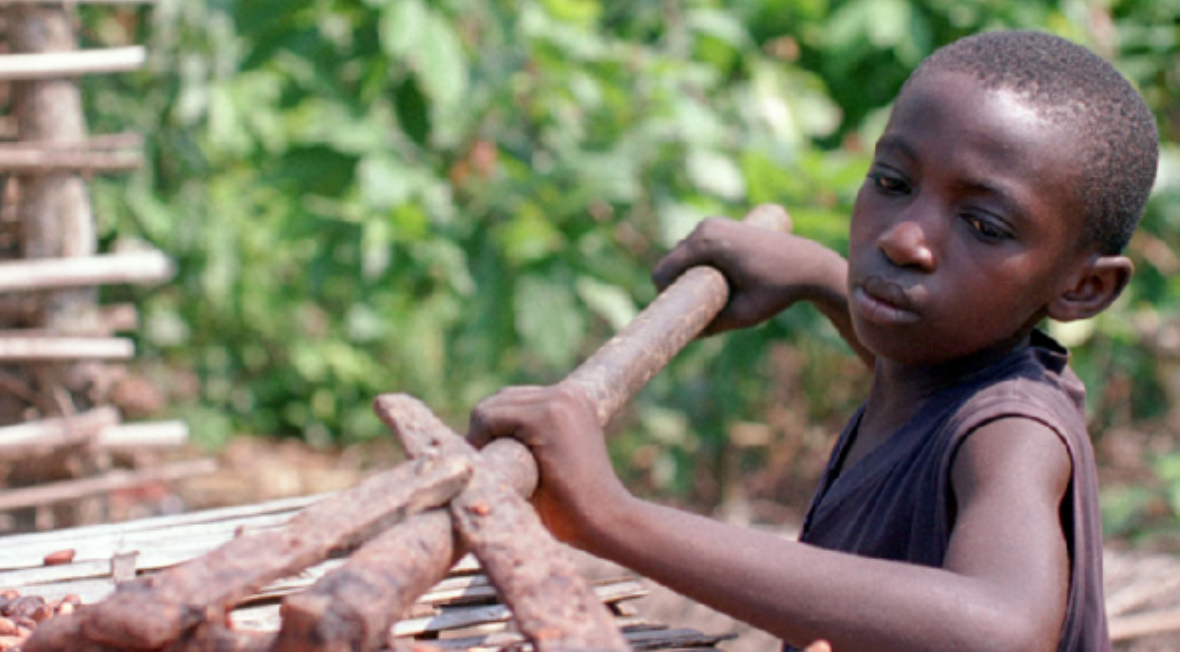 an analysis of issues of the chocolate industry in africa Human rights and child labour in 2001, the cocoa and chocolate industry agreed to for more information on the developments in child labour in west africa.