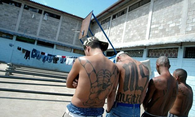 The Connection between the Mara Salvatrucha and Human Trafficking