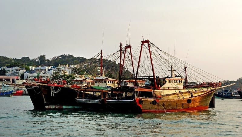 Illegal Fishing and Human Rights Abuses at Sea