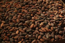 Challenging Importation of Cocoa Produced with Forced Child Labor