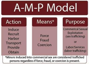 A-M-P Model action means purpose