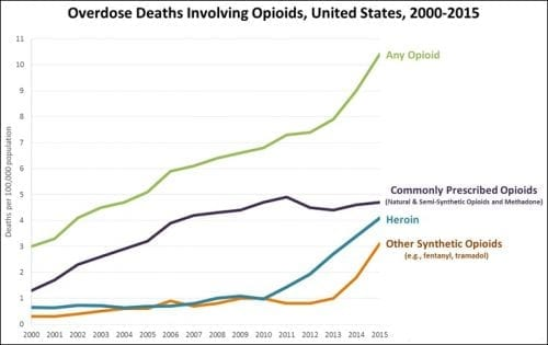 Human Trafficking & the Opioid Crisis: An Interview with Dr. Hanni Stoklosa