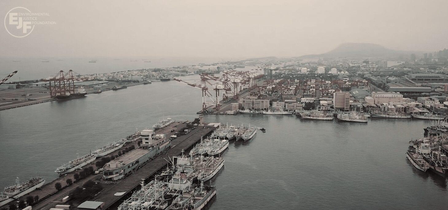 Exploitation and Lawlessness: The Dark Side of Taiwan's Fishing Fleet (video)