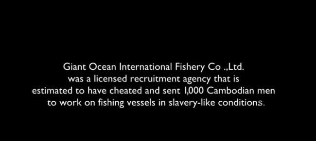 The Giant Ocean Case (video)