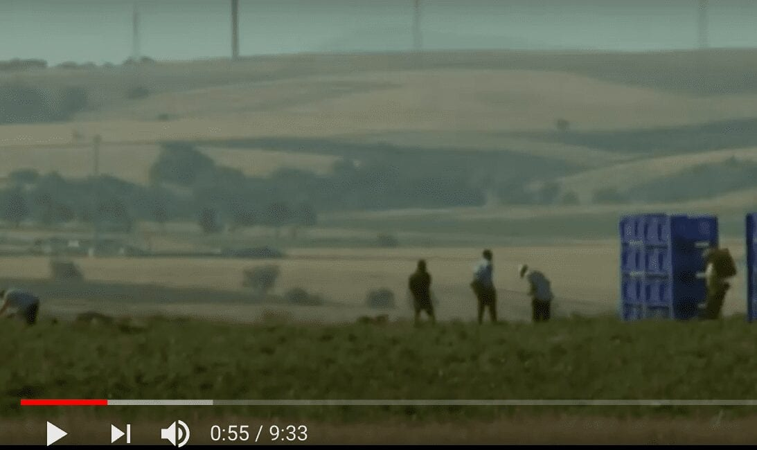 The Invisibles: Inhumane Conditions of Italy's Migrant Farm workers
