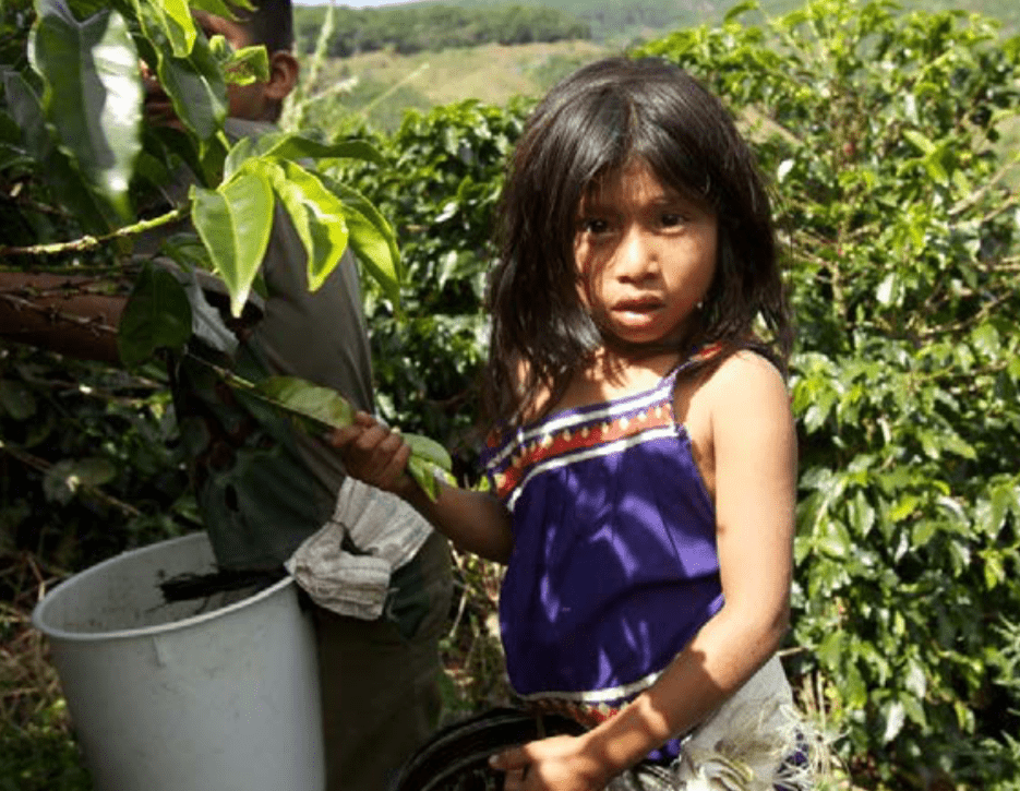 2020 List of Goods Produced by Child Labor or Forced Labor