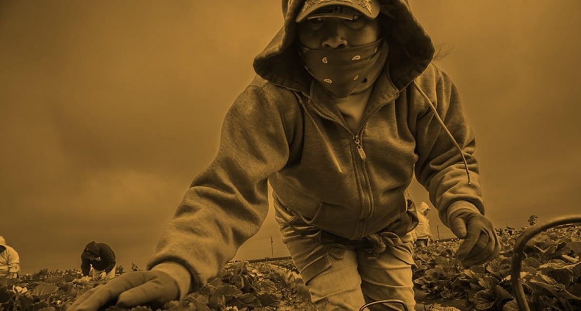 Tiempo de Reforma: Abuso de las y los trabajadores agrícolas en el Programa del H-2A