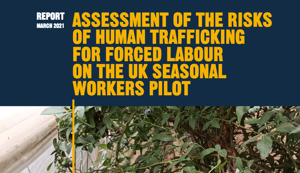 Assessment of the Risks of Human Trafficking for Forced Labor on the UK Seasonal Workers Pilot
