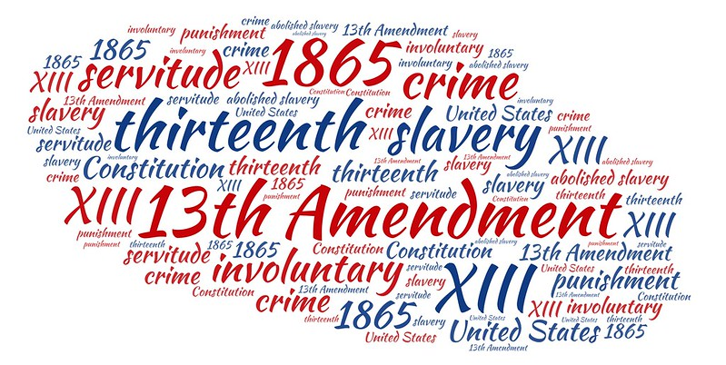 Amend the 13th : Outlaw slavery in the United States