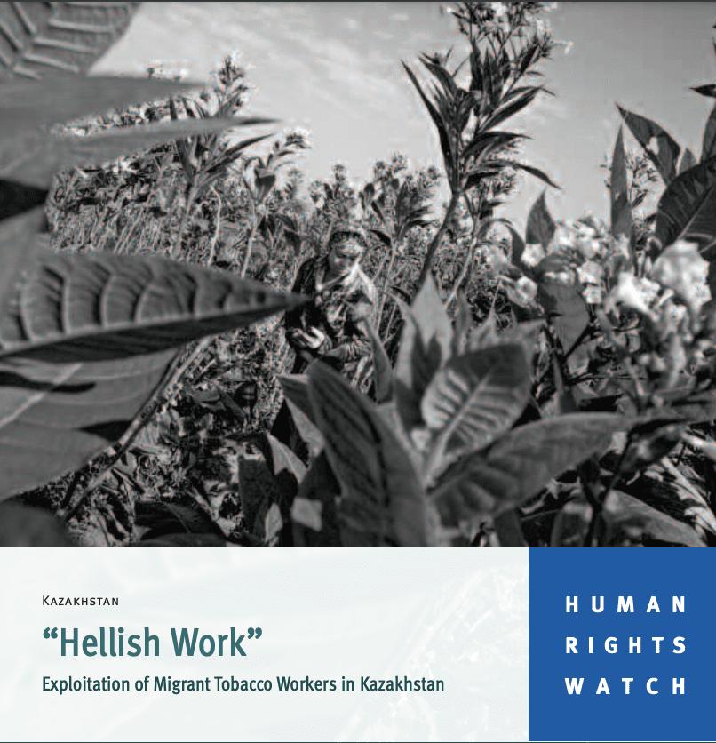 """Hellish Work"" Exploitation of Migrant Tobacco Workers in Kazakhstan"