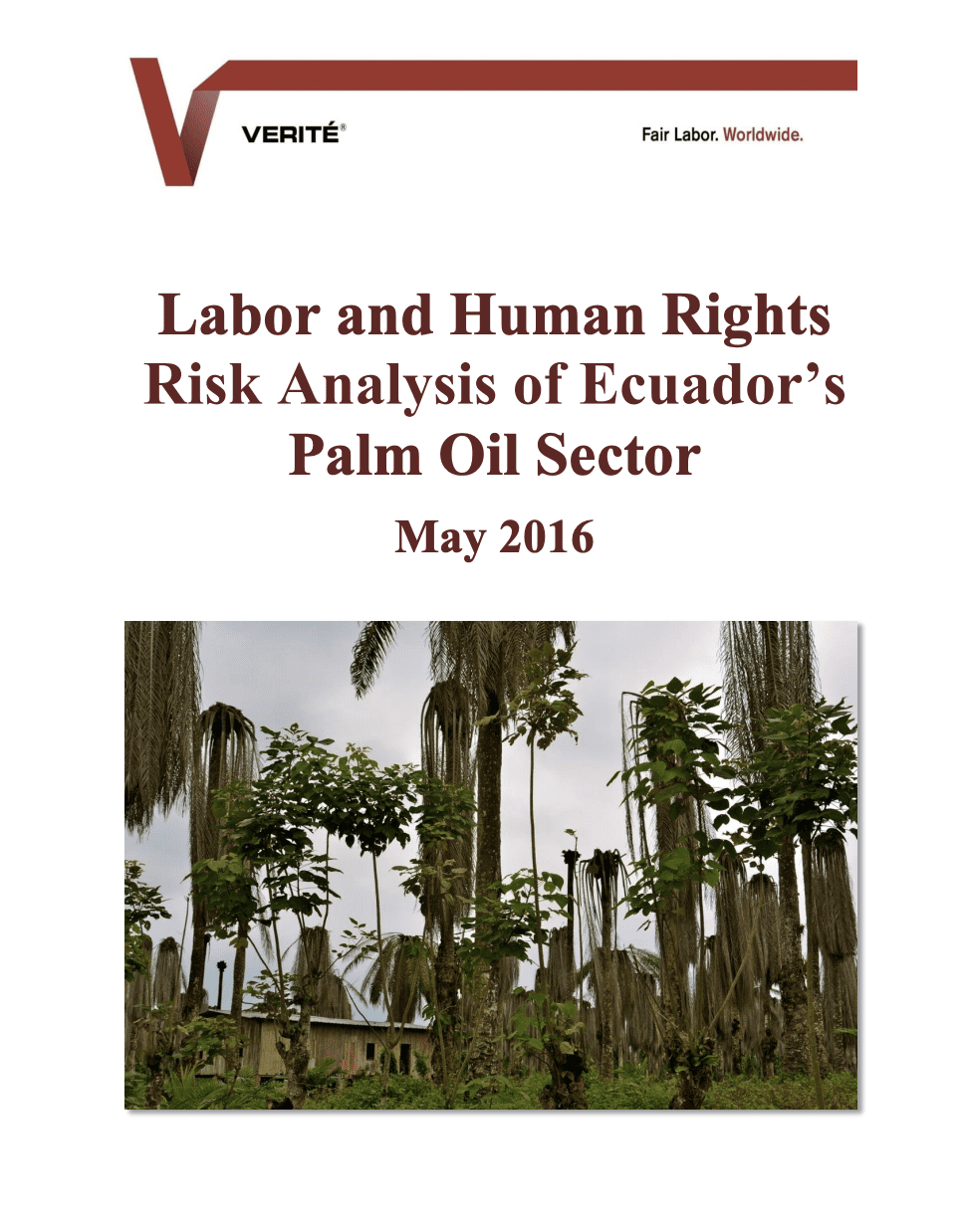 Labor and Human Rights Risk Analysis of Ecuador's Palm Oil Sector
