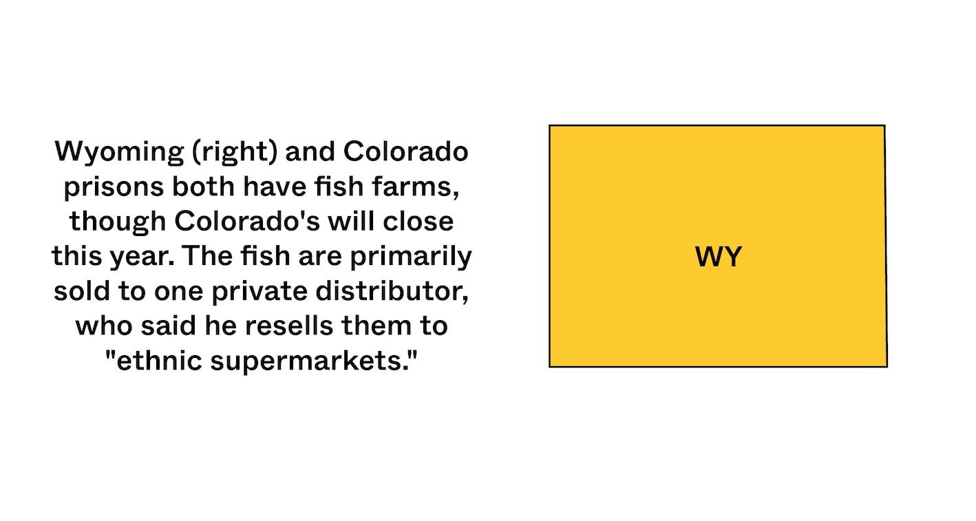 State of Wyoming in yellow with a statistic about inmate made food. May 2021